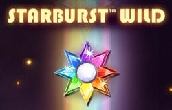 Starburst Wild