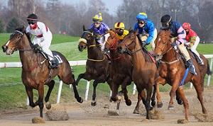 Sportech Racing Paardenrennen